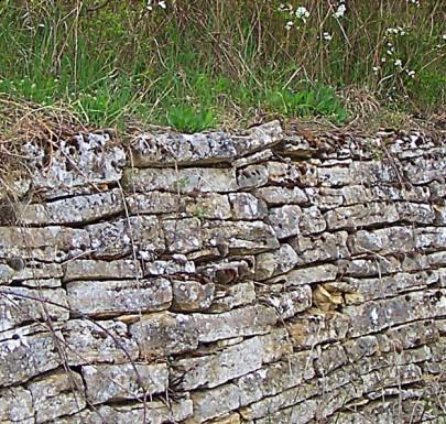 Trockenmauer, Rheinhessen